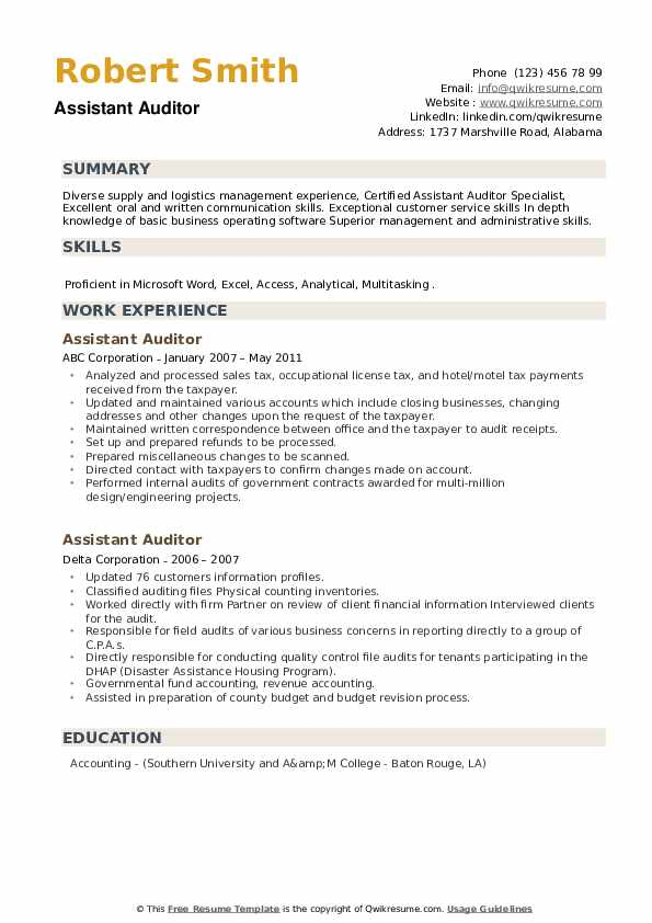 Assistant Auditor Resume example