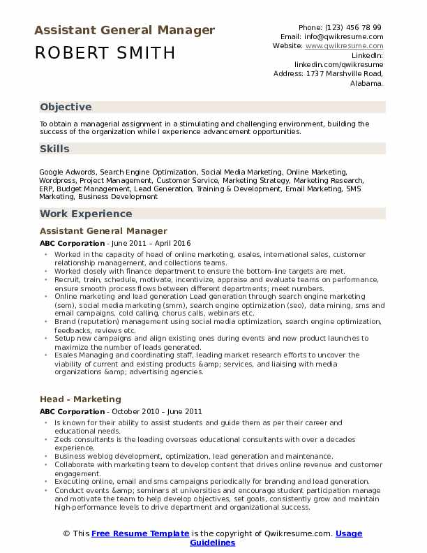 Assistant General Manager Resume Model