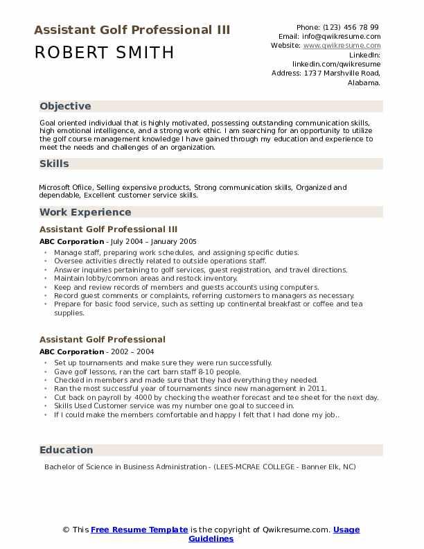 Locomotive Engineer/Consultant Resume Template