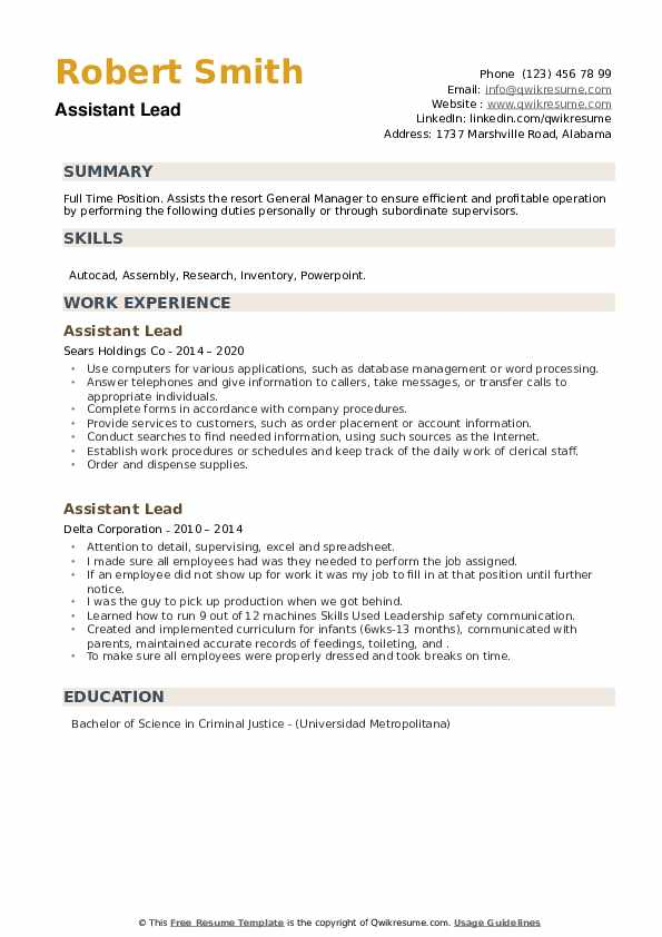 Assistant Lead Resume example