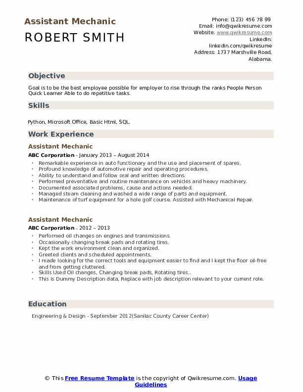 Assistant Mechanic Resume example