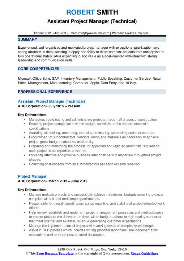 Assistant Project Manager (Technical) Resume Template