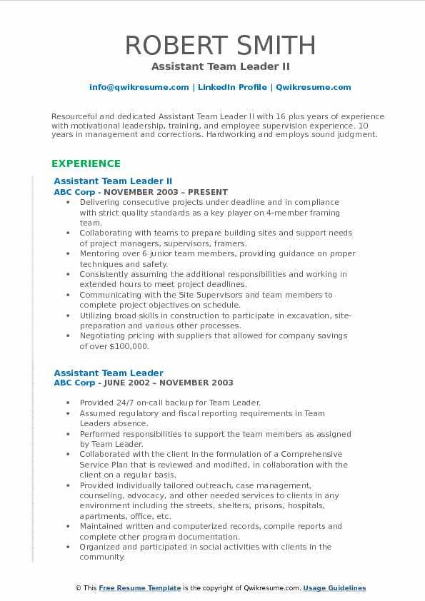 Assistant Team Leader II Resume Format