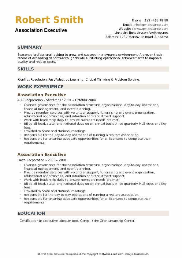Association Executive Resume example