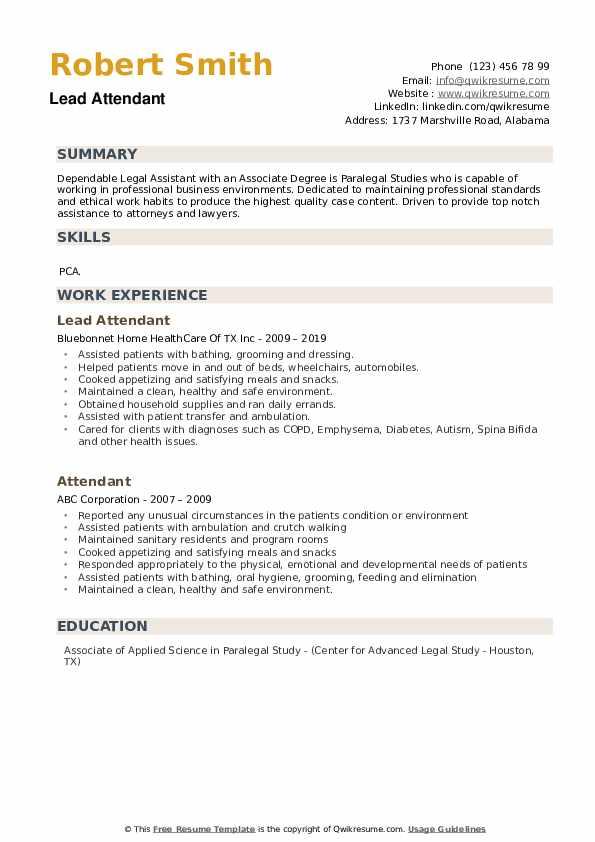 Lead Attendant Resume Sample