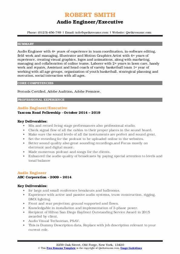 Audio Engineer/Executive Resume Sample