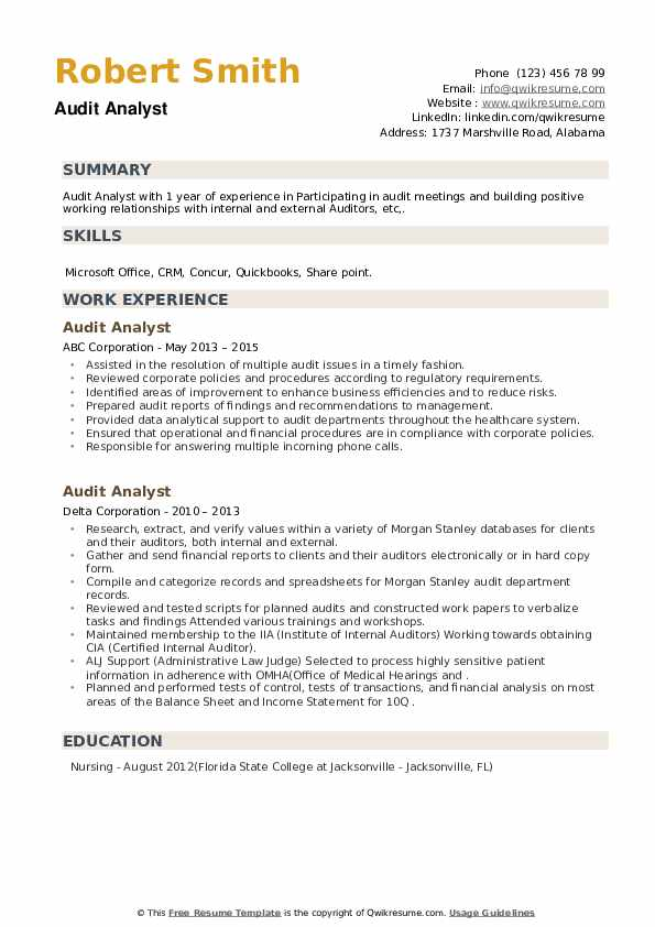 Audit Analyst Resume example