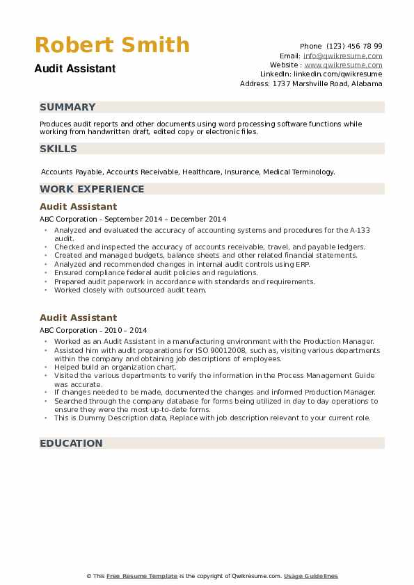 Audit Assistant Resume example