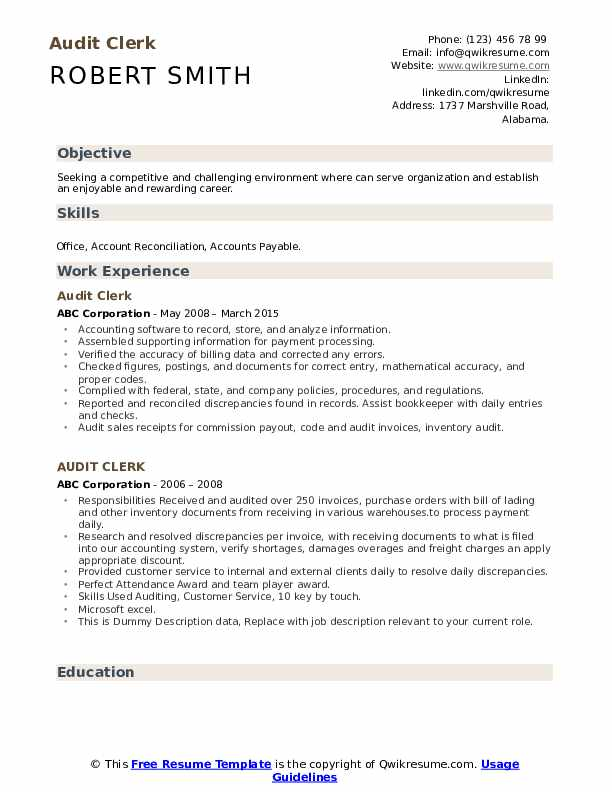 Audit Clerk Resume example