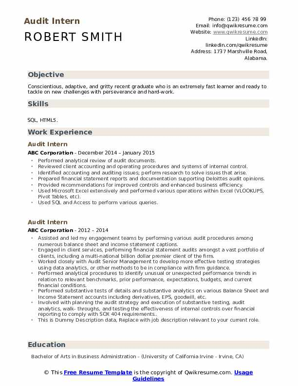 Audit Intern Resume example