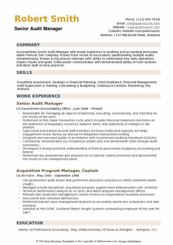 Audit Manager Resume example