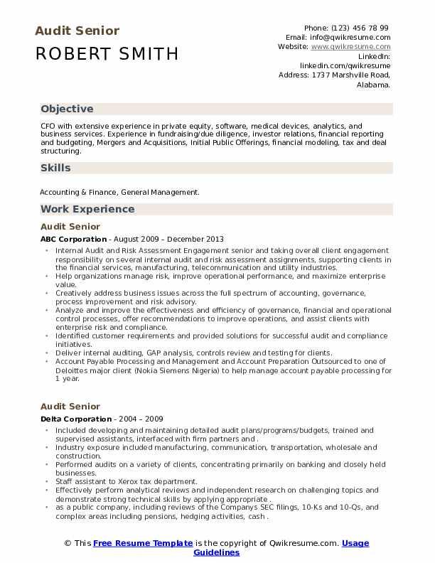 Audit Senior Resume Samples Qwikresume