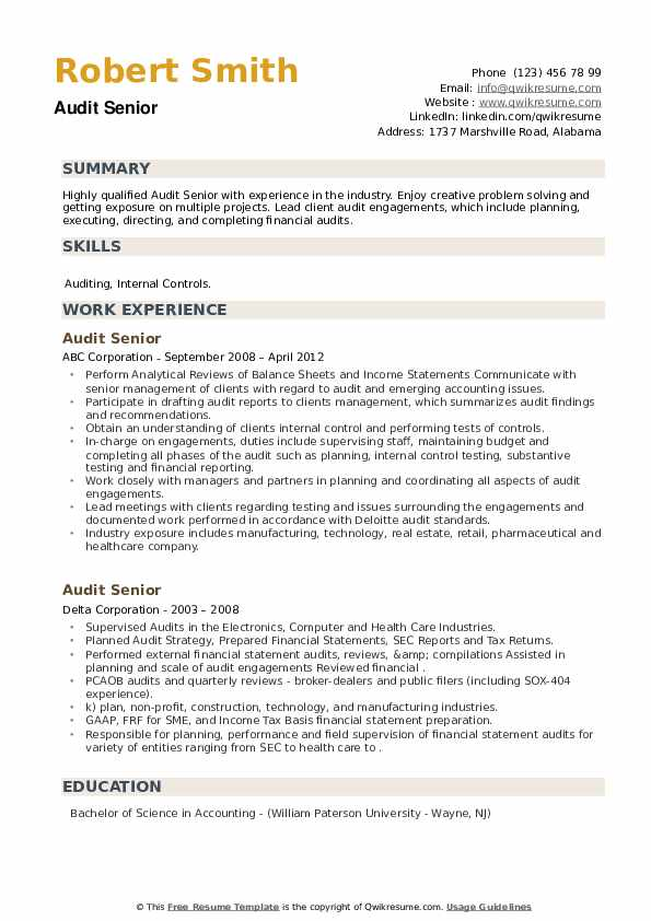 Audit Senior Resume example