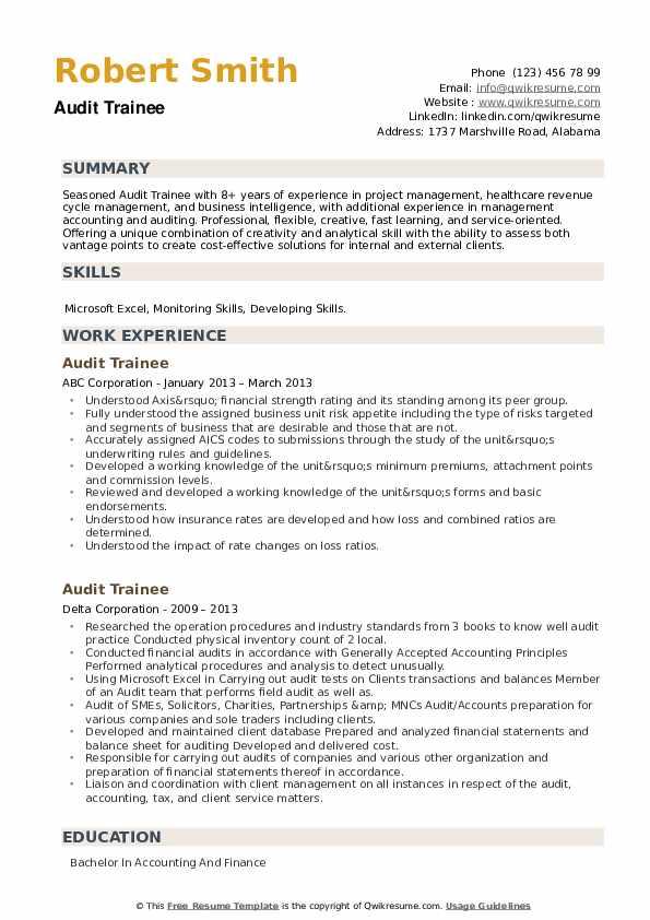 Audit Trainee Resume example