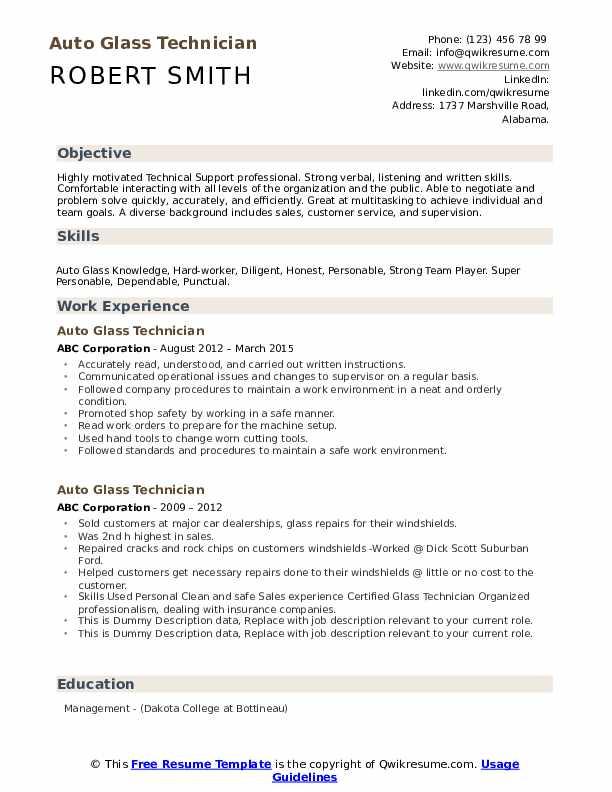 Auto Glass Technician Resume example