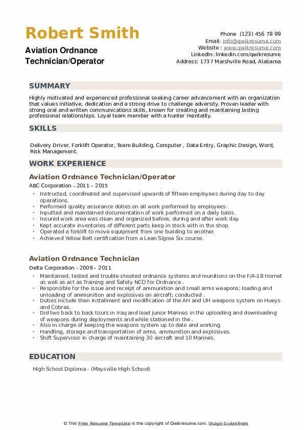 Aviation Ordnance Technician Resume example