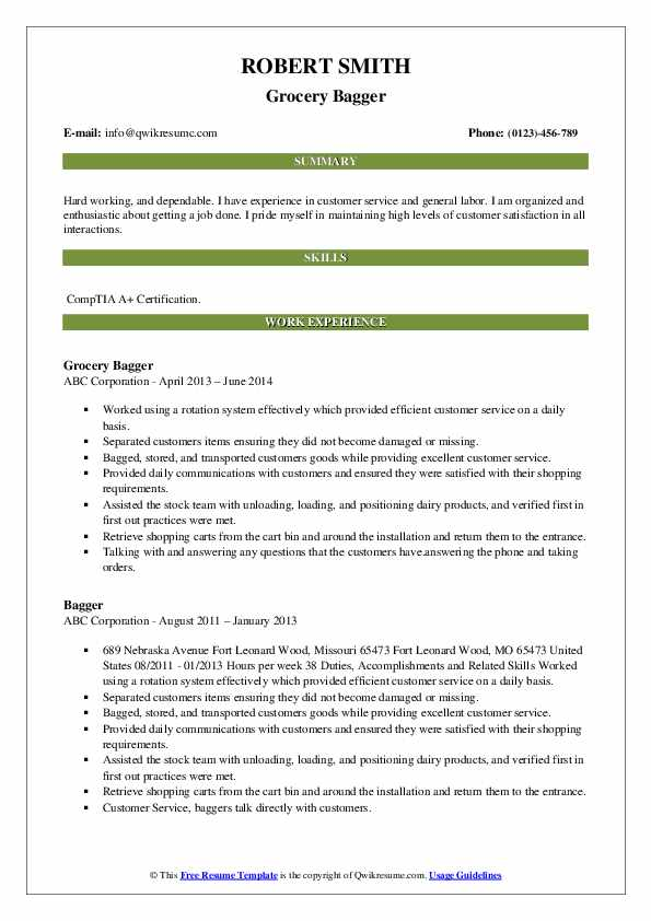 Grocery Bagger Resume Example