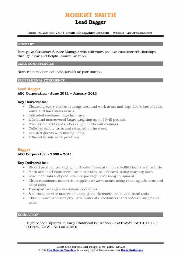 bagger resume samples