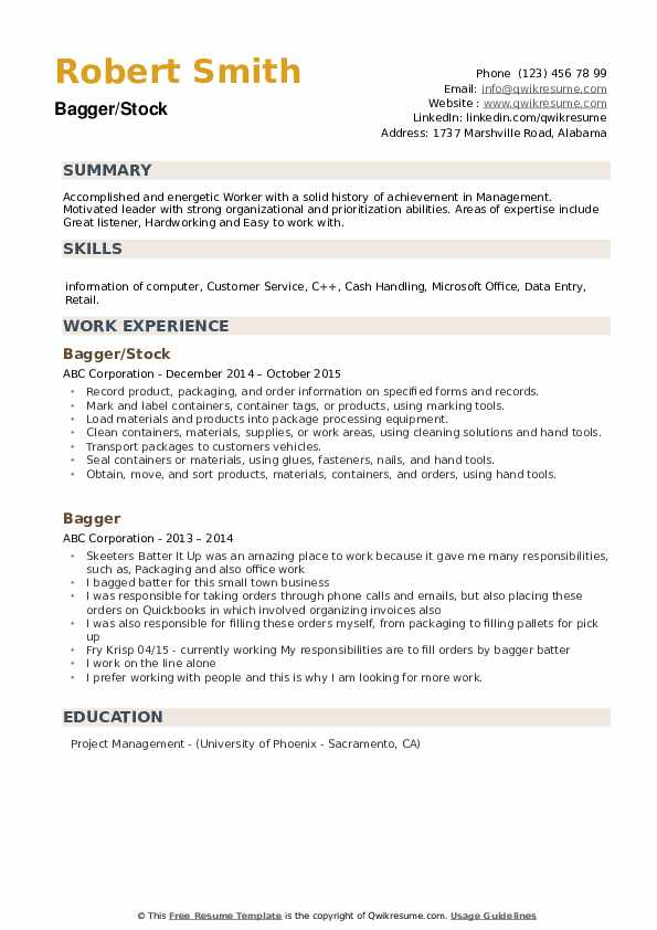 Bagger/Stock Resume Template