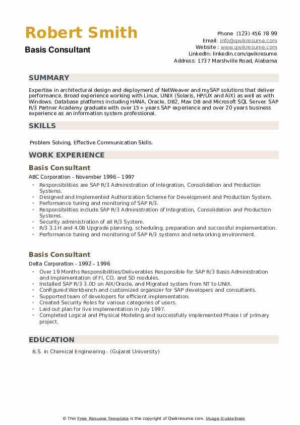 Basis Consultant Resume example