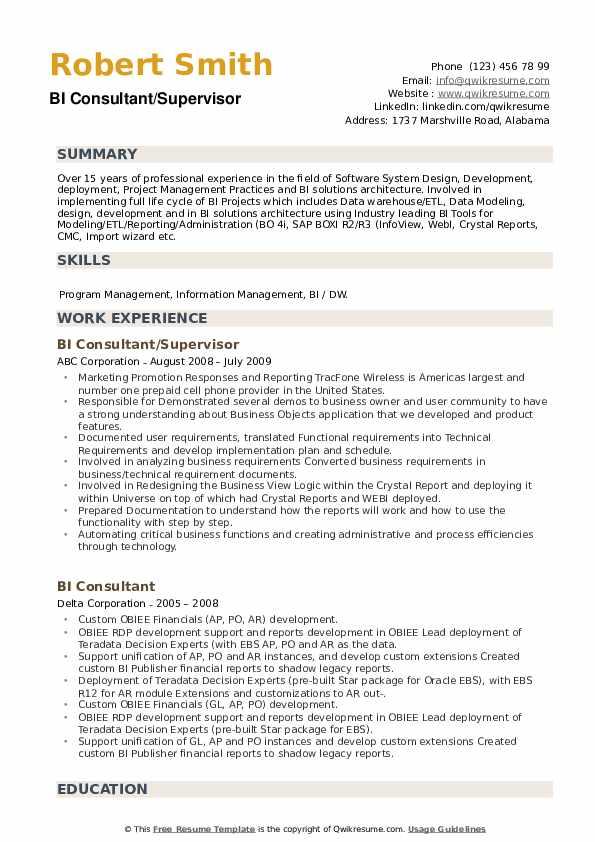 BI Consultant Resume example