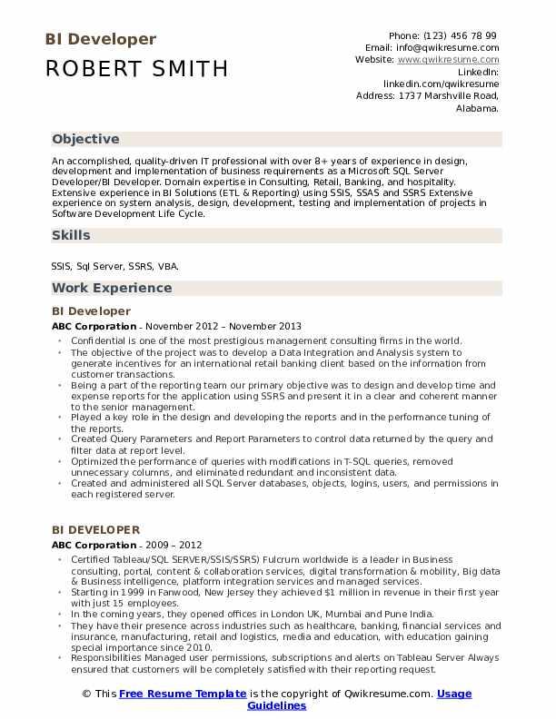 BI Developer Resume Model