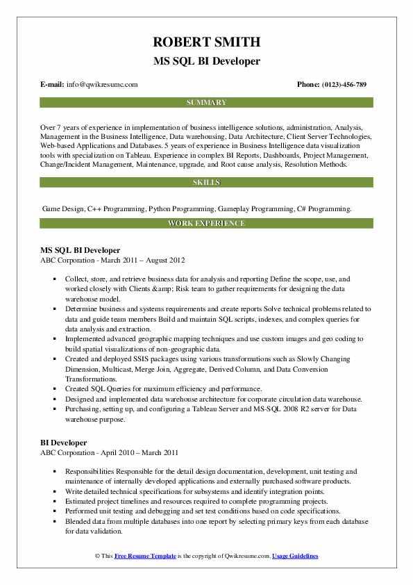 MS SQL BI Developer Resume Format