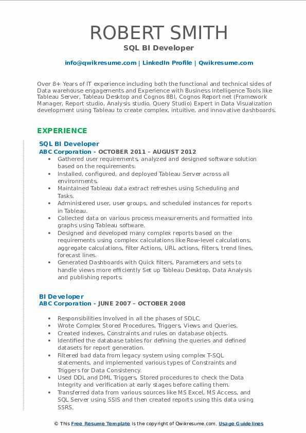 SQL BI Developer Resume Format