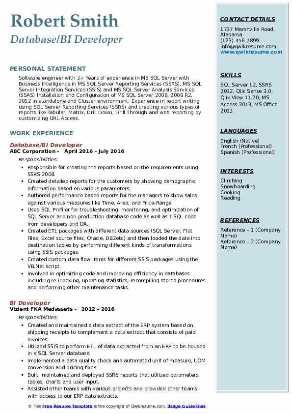 Database/BI Developer Resume Example