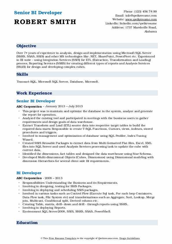 Senior BI Developer Resume Example