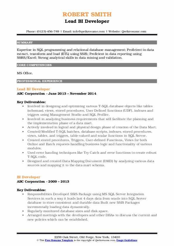 Lead BI Developer Resume Sample