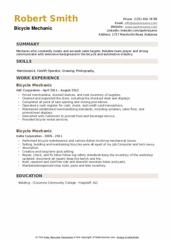 Bicycle Mechanic Resume example