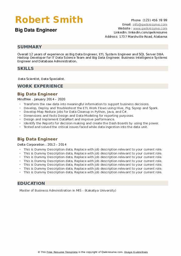 Big Data Engineer Resume example