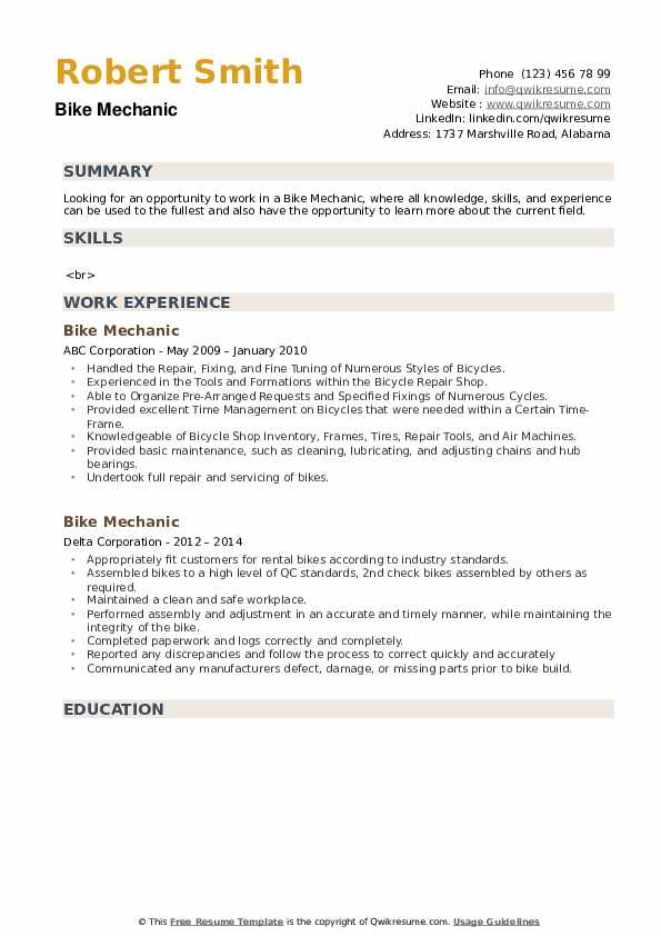Bike Mechanic Resume example