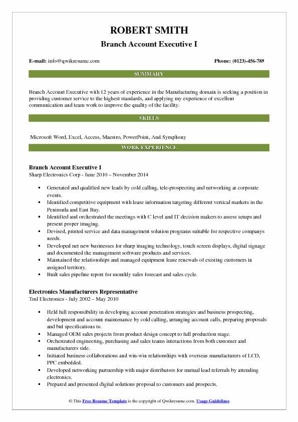 Branch Account Executive I Resume Model