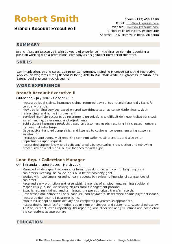 Branch Account Executive Resume example