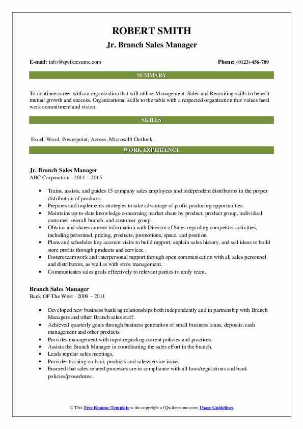Jr. Branch Sales Manager Resume Model
