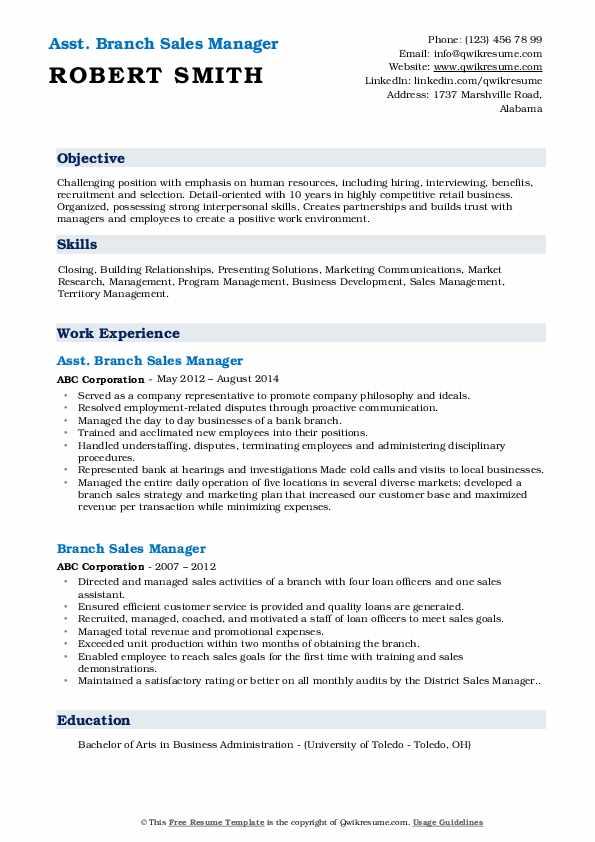 Asst. Branch Sales Manager Resume Format