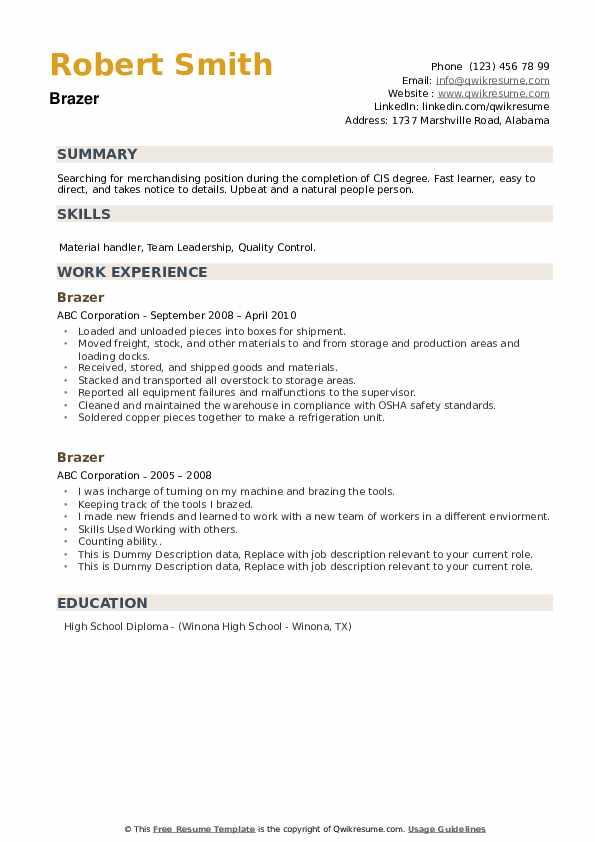 Brazer Resume example