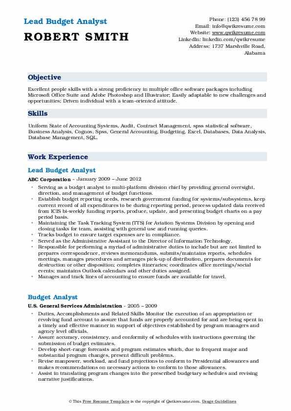 Lead Budget Analyst Resume Model