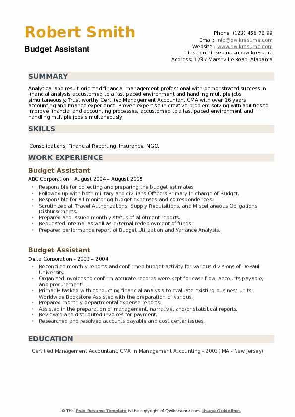 Budget Assistant Resume example