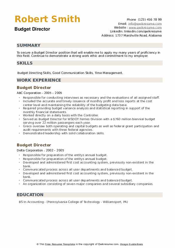 Budget Director Resume example