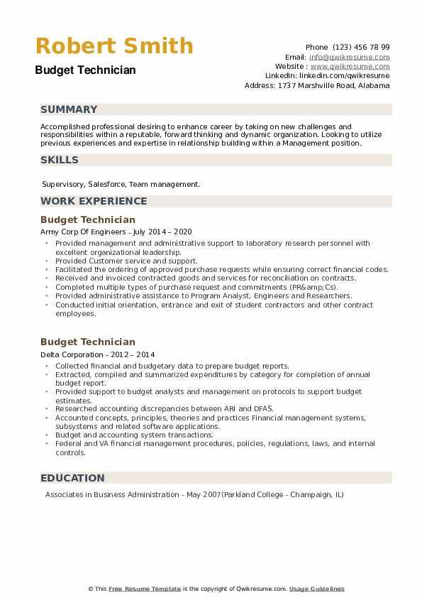 Budget Technician Resume example