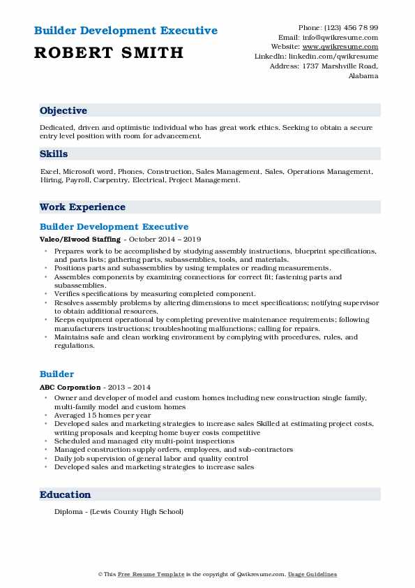 Builder Development Executive Resume Example