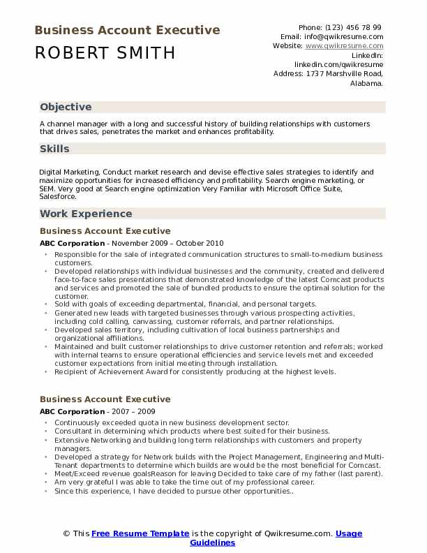 Business Account Executive Resume Sample