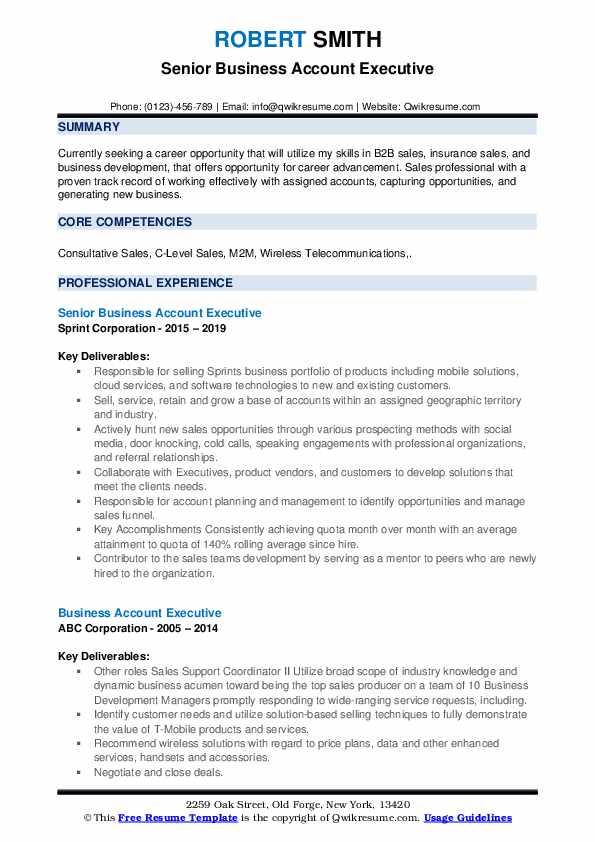 Senior Business Account Executive Resume Sample