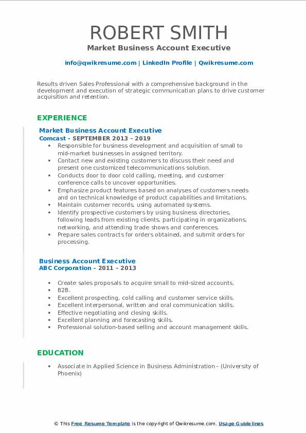 Market Business Account Executive Resume Template