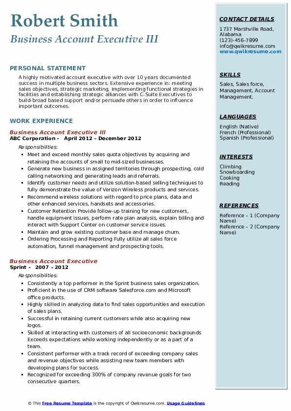 Business Account Executive III Resume Format