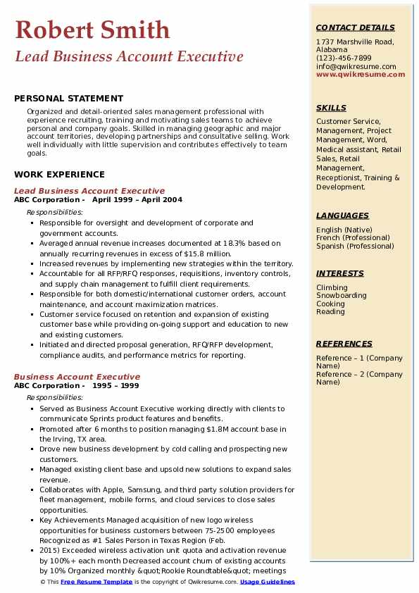 Lead Business Account Executive Resume Template