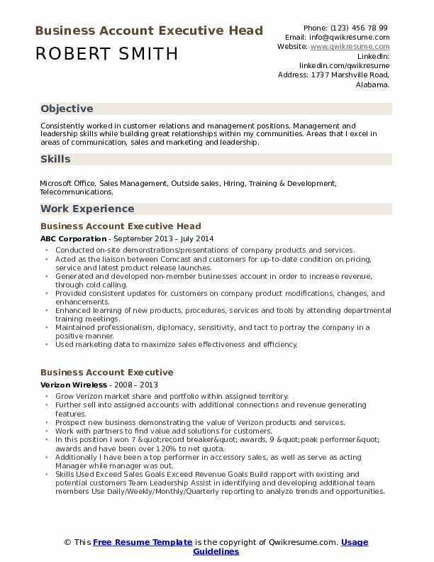 Business Account Executive Head Resume Sample